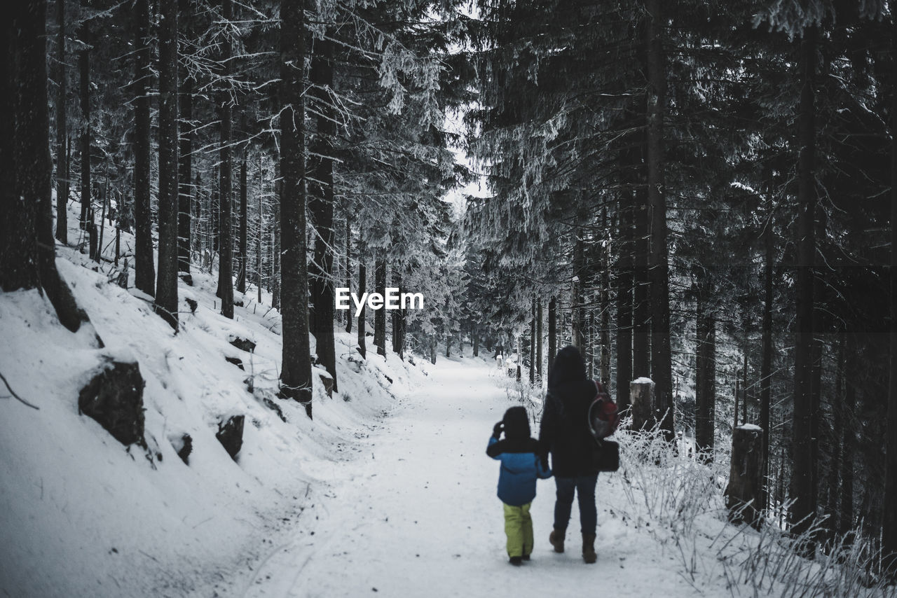 People On Snow Covered Forest