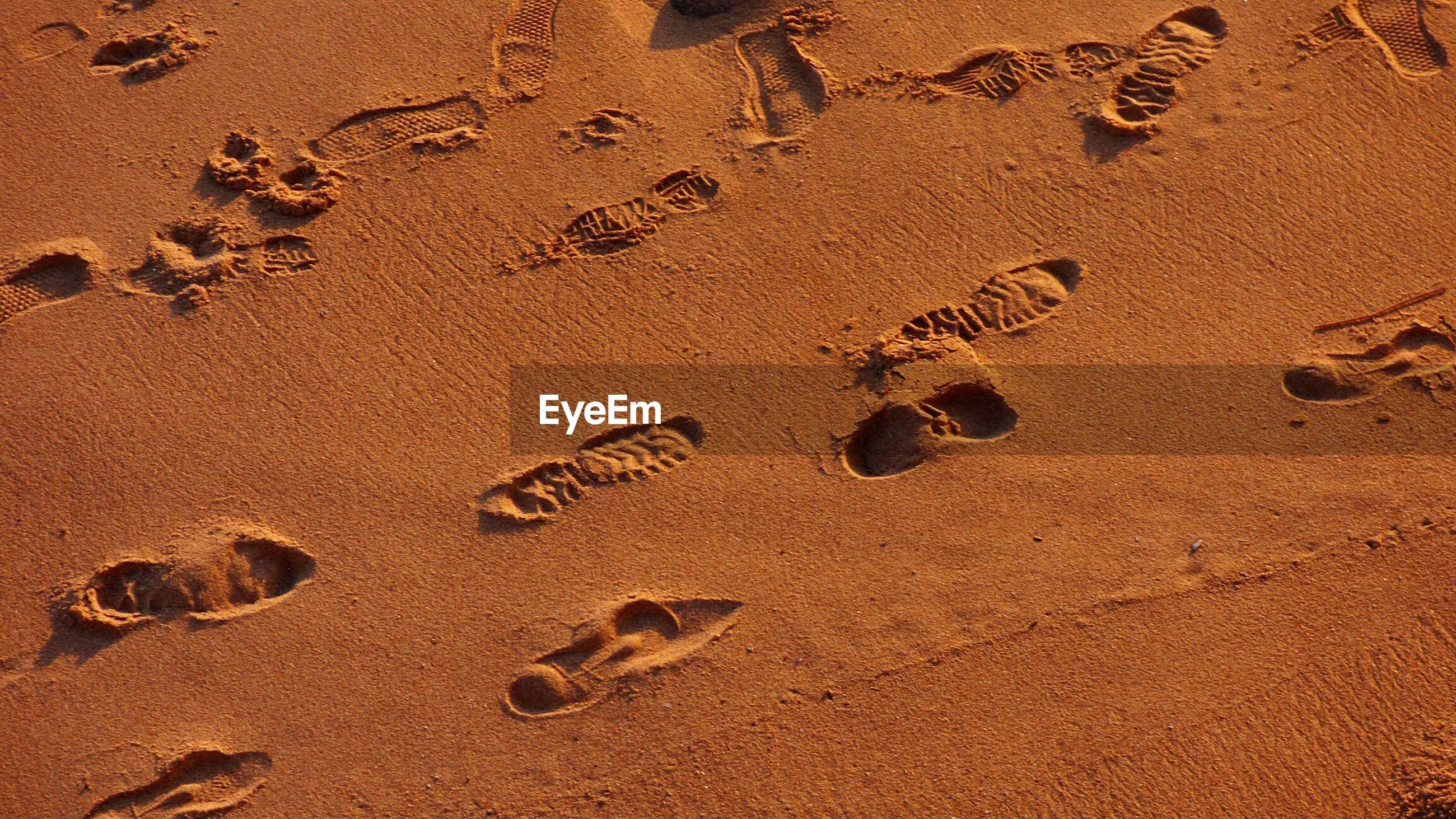Footprints on sandy beach