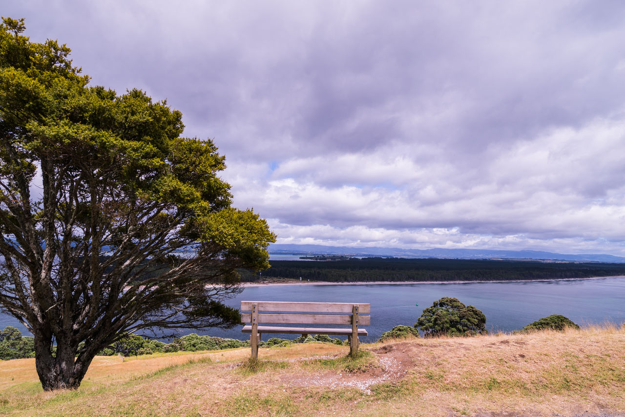 nature, tree, beauty in nature, tranquility, tranquil scene, sky, scenics, day, cloud - sky, water, no people, outdoors