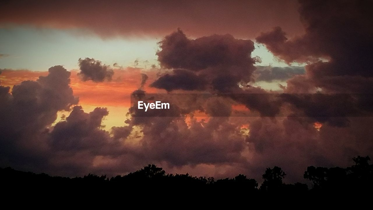 silhouette, sky, nature, beauty in nature, tree, cloud - sky, sunset, tranquility, tranquil scene, scenics, dramatic sky, no people, low angle view, outdoors, landscape, day