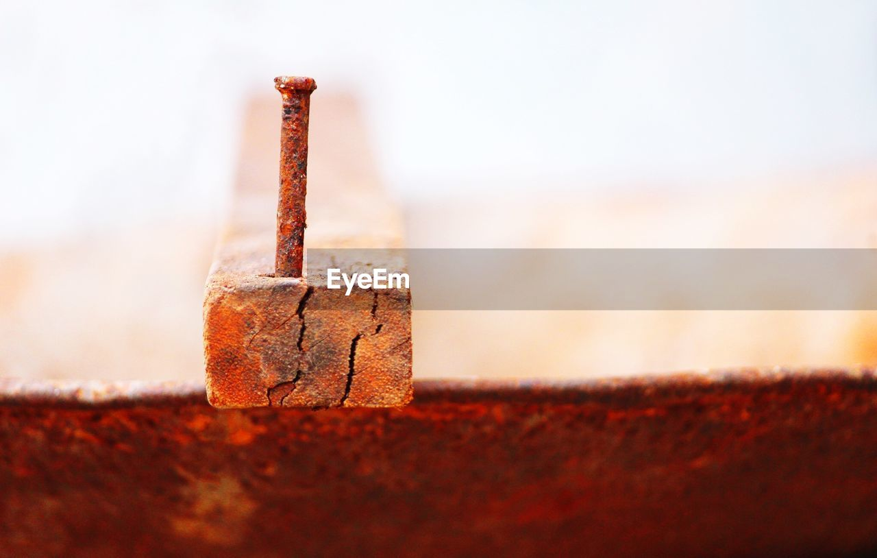 Close-up of rusty nail on wood