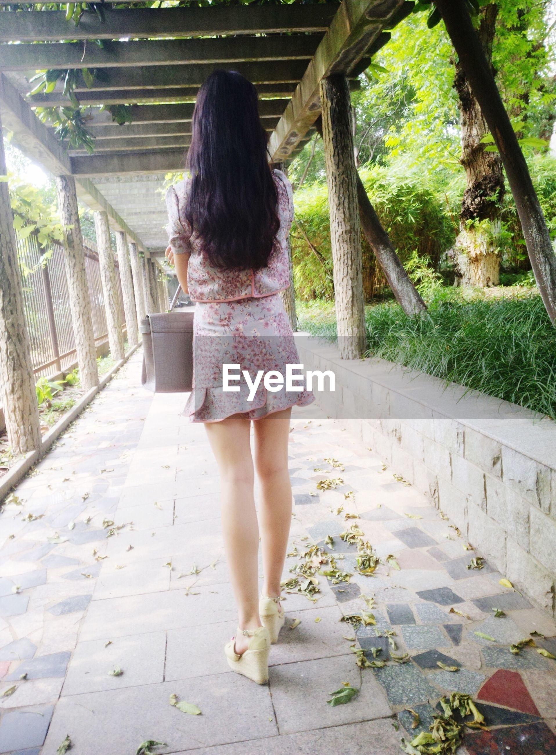 full length, lifestyles, rear view, leisure activity, casual clothing, walking, person, standing, young women, long hair, young adult, tree, the way forward, sunlight, footpath, day, outdoors