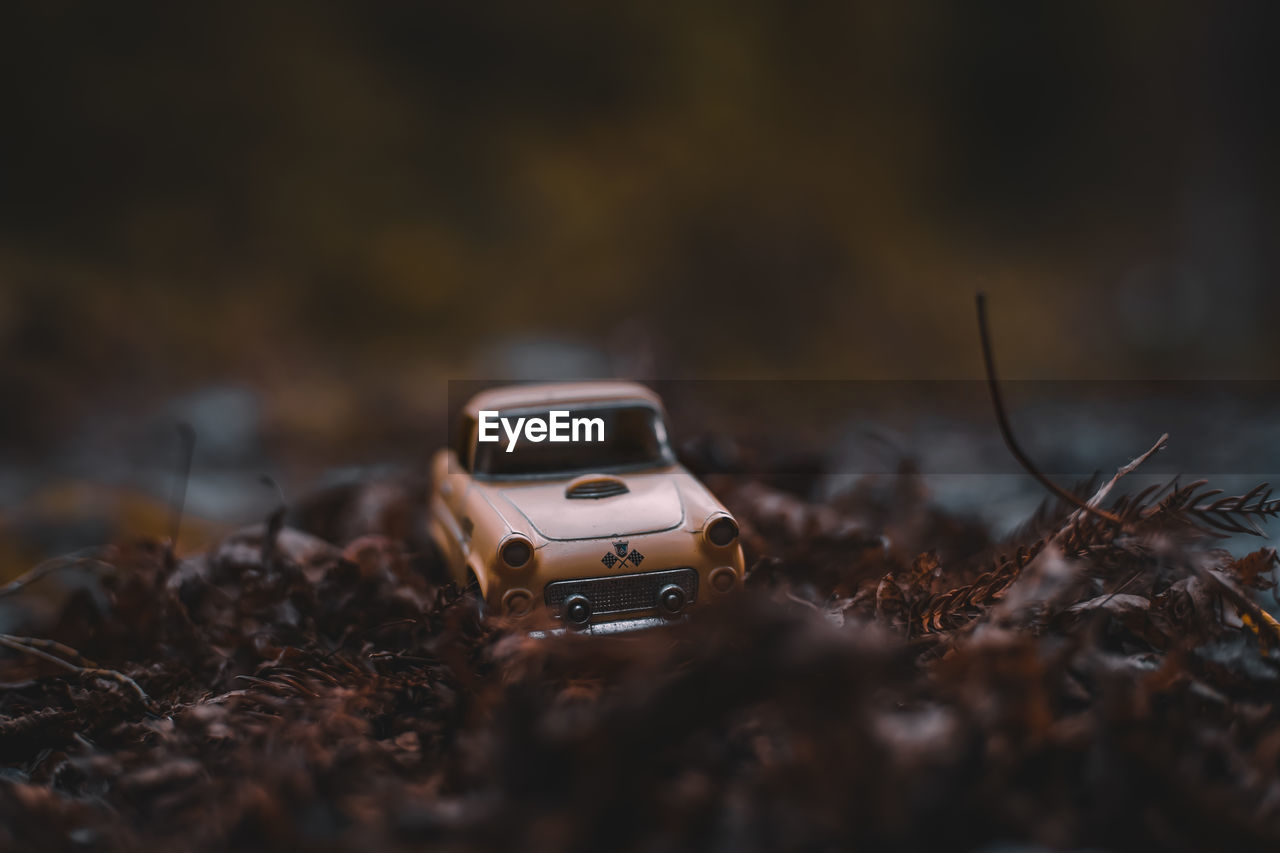 selective focus, no people, toy, toy car, transportation, mode of transportation, car, field, day, land vehicle, close-up, still life, surface level, small, nature, motor vehicle, dirt, outdoors, brown