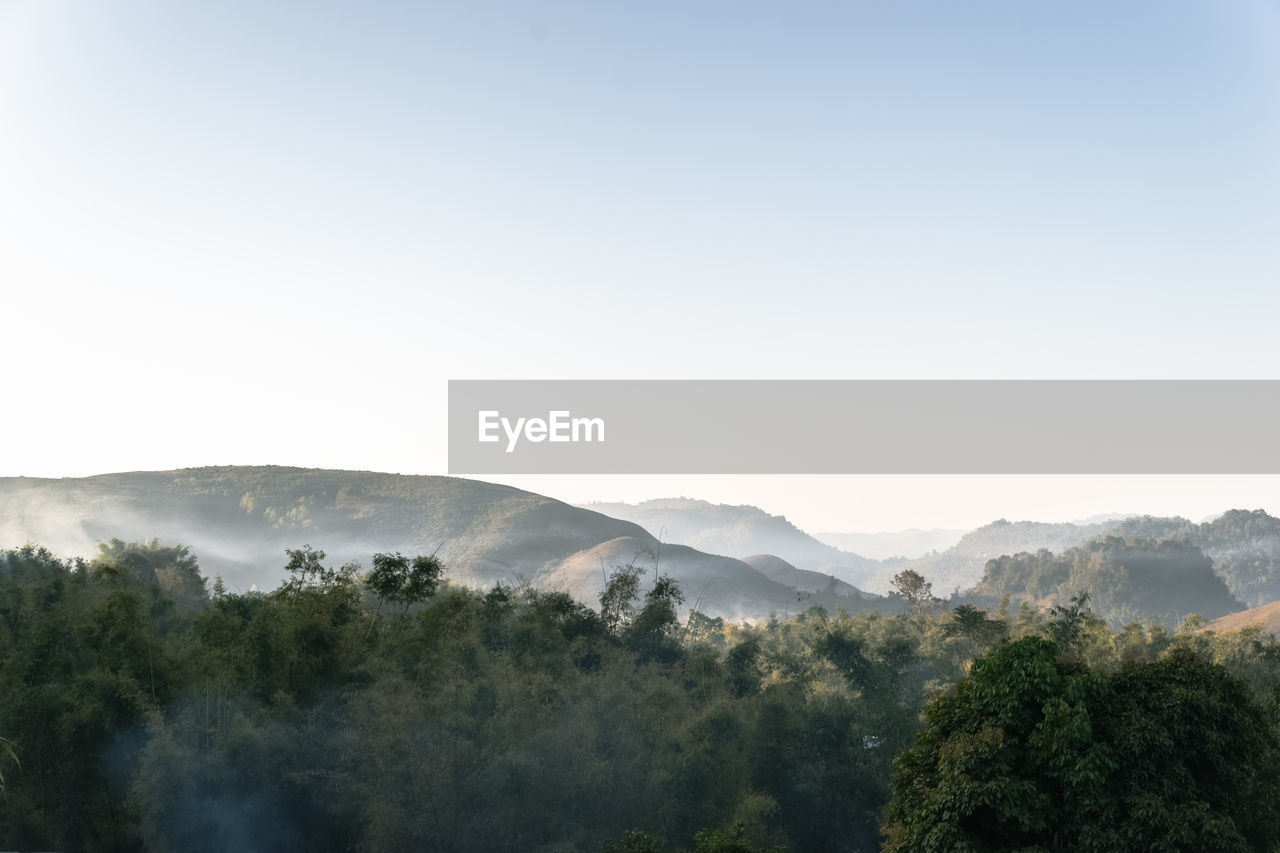 Scenic View Of Trees And Mountains Against Clear Sky