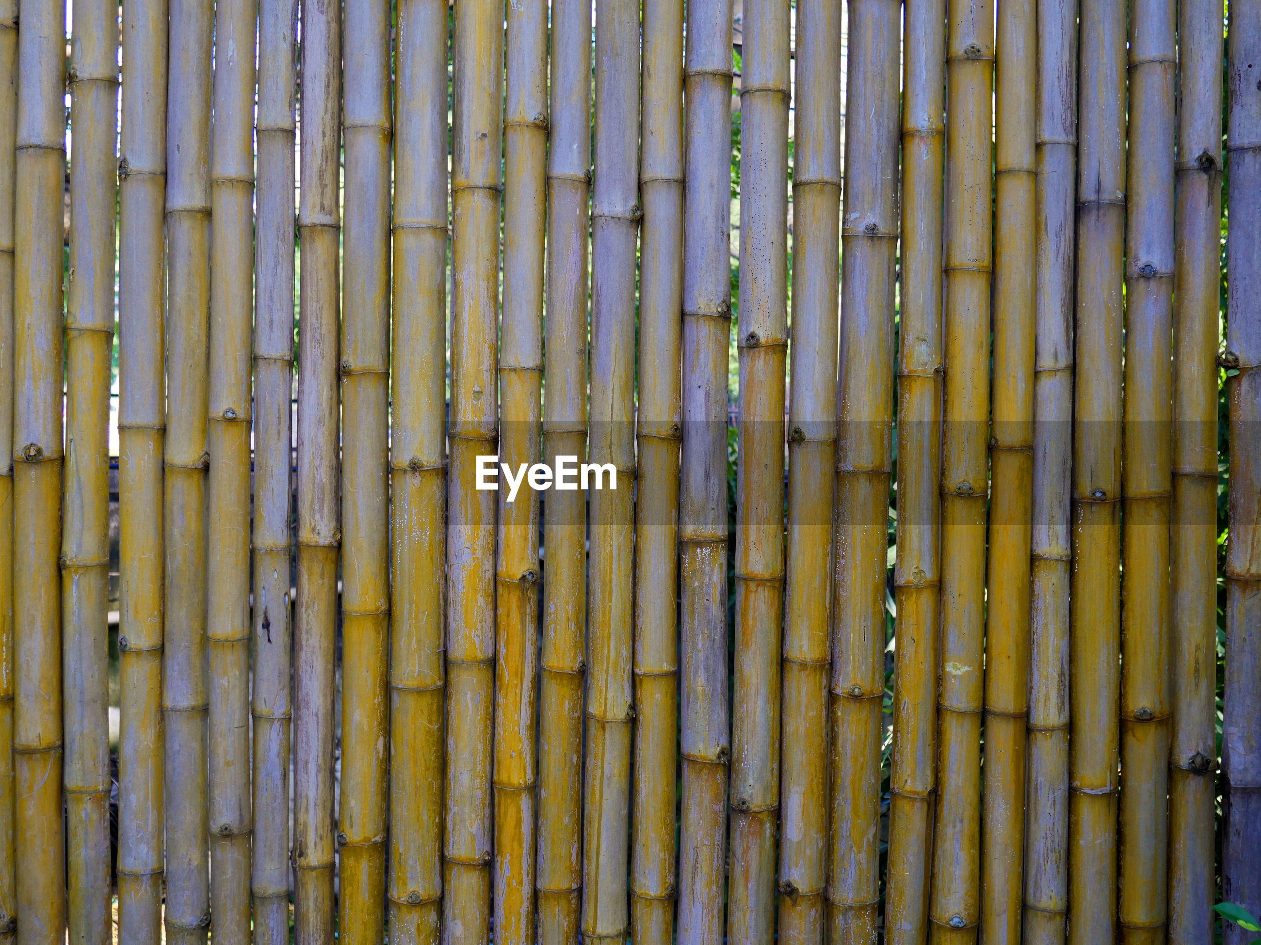Full frame shot of bamboo fence