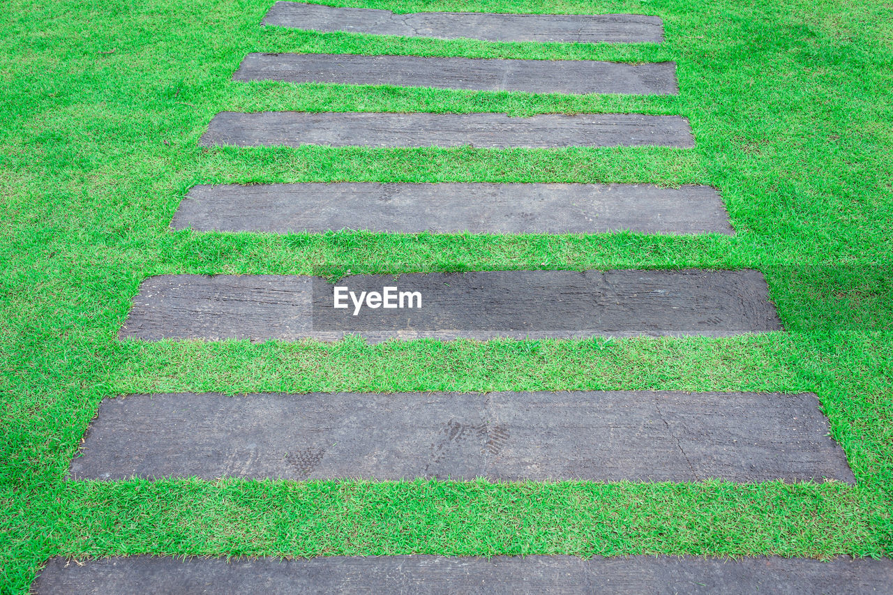 green color, grass, no people, plant, day, in a row, high angle view, nature, outdoors, land, full frame, backgrounds, footpath, field, close-up, pattern, growth, direction, large group of objects, shape