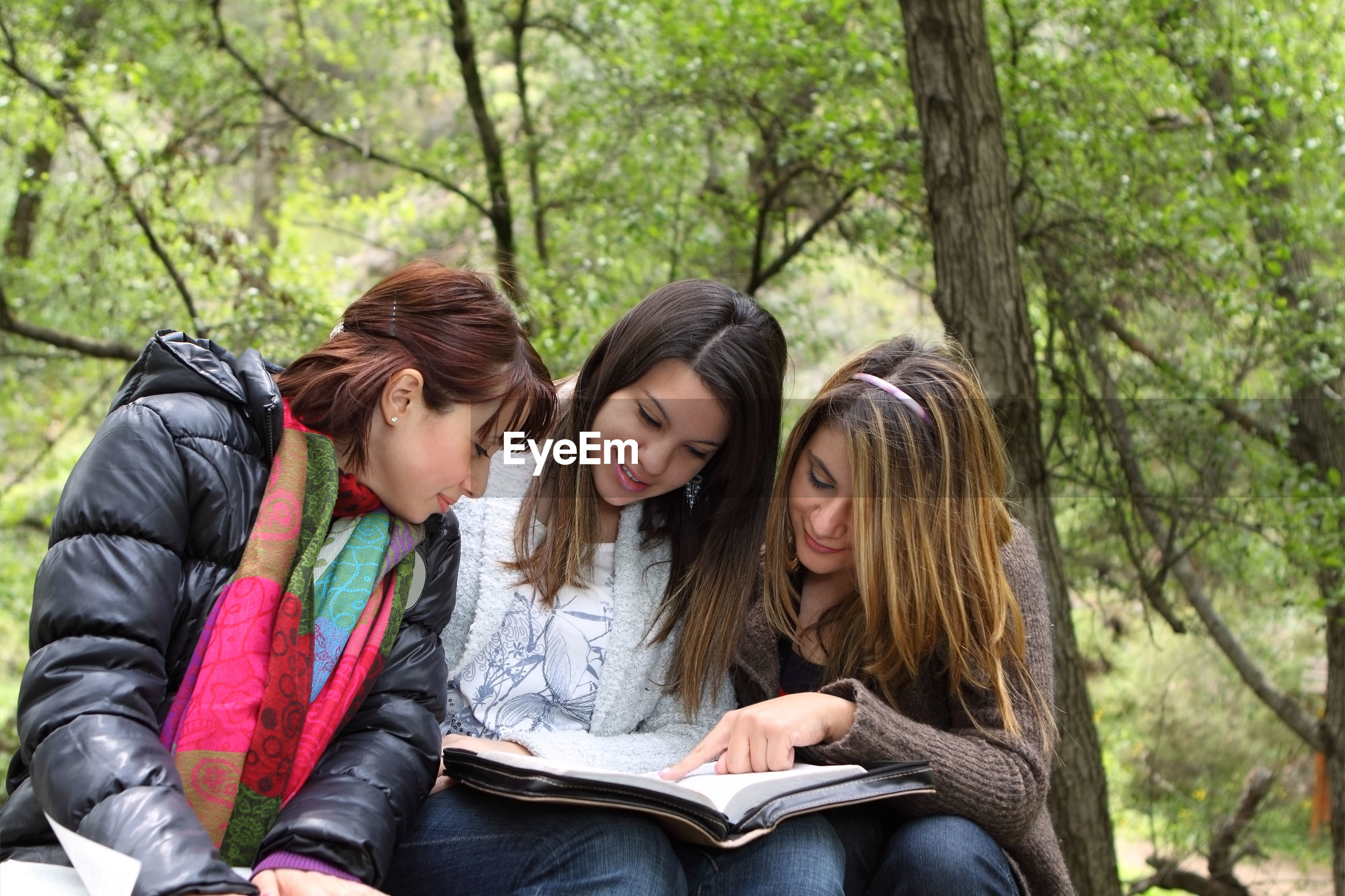 Friends reading book while sitting against trees in park