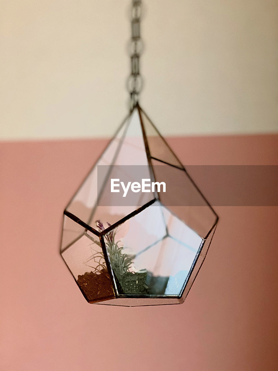 indoors, close-up, no people, glass - material, plant, transparent, wall - building feature, shape, still life, nature, tree, studio shot, hanging, focus on foreground, design, picture frame, window, art and craft, geometric shape