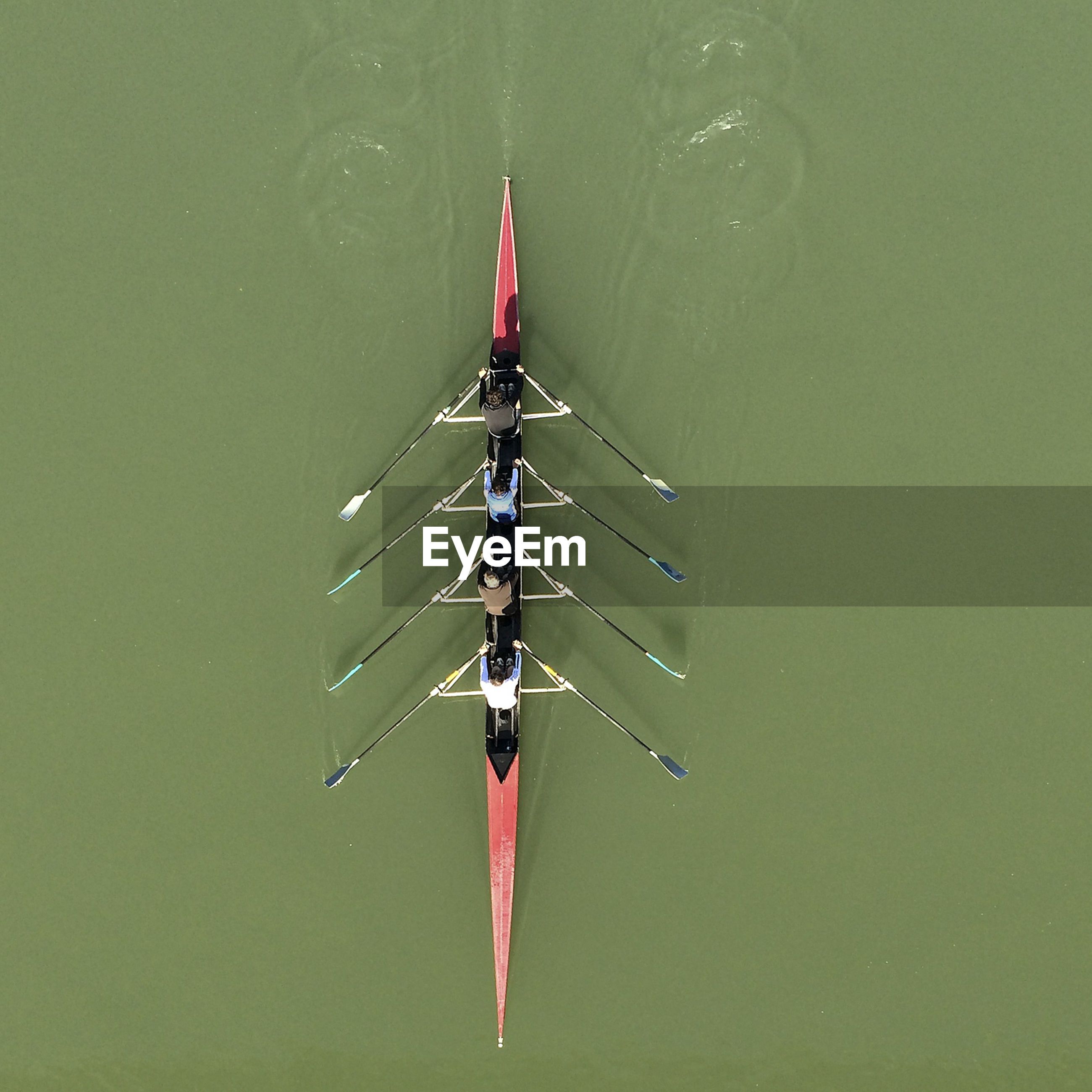 Directly above shot of team rowing boat in river