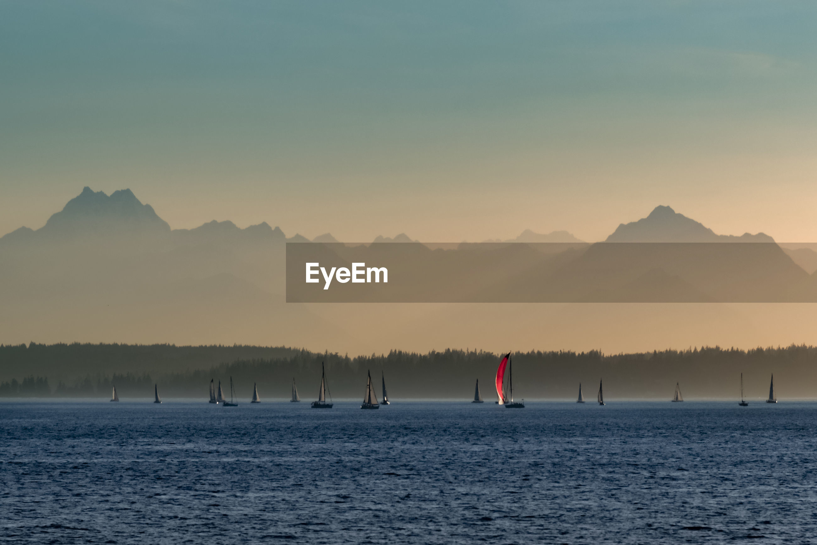Sailboats on elliott bay by olympic mountains against sky