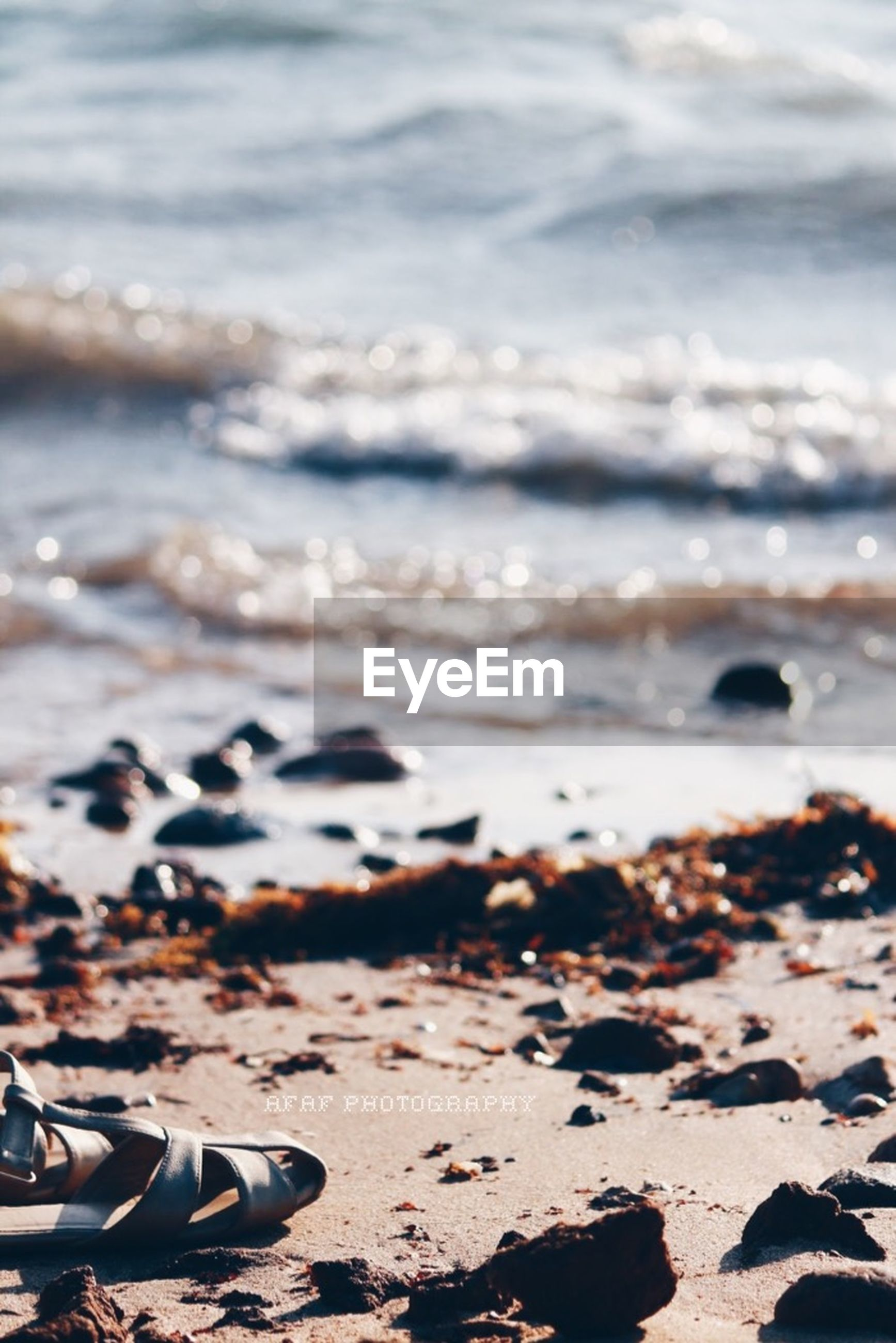 beach, water, shore, sea, sand, tranquility, selective focus, surface level, nature, focus on foreground, pebble, beauty in nature, wave, stone - object, outdoors, close-up, tranquil scene, surf, scenics, day