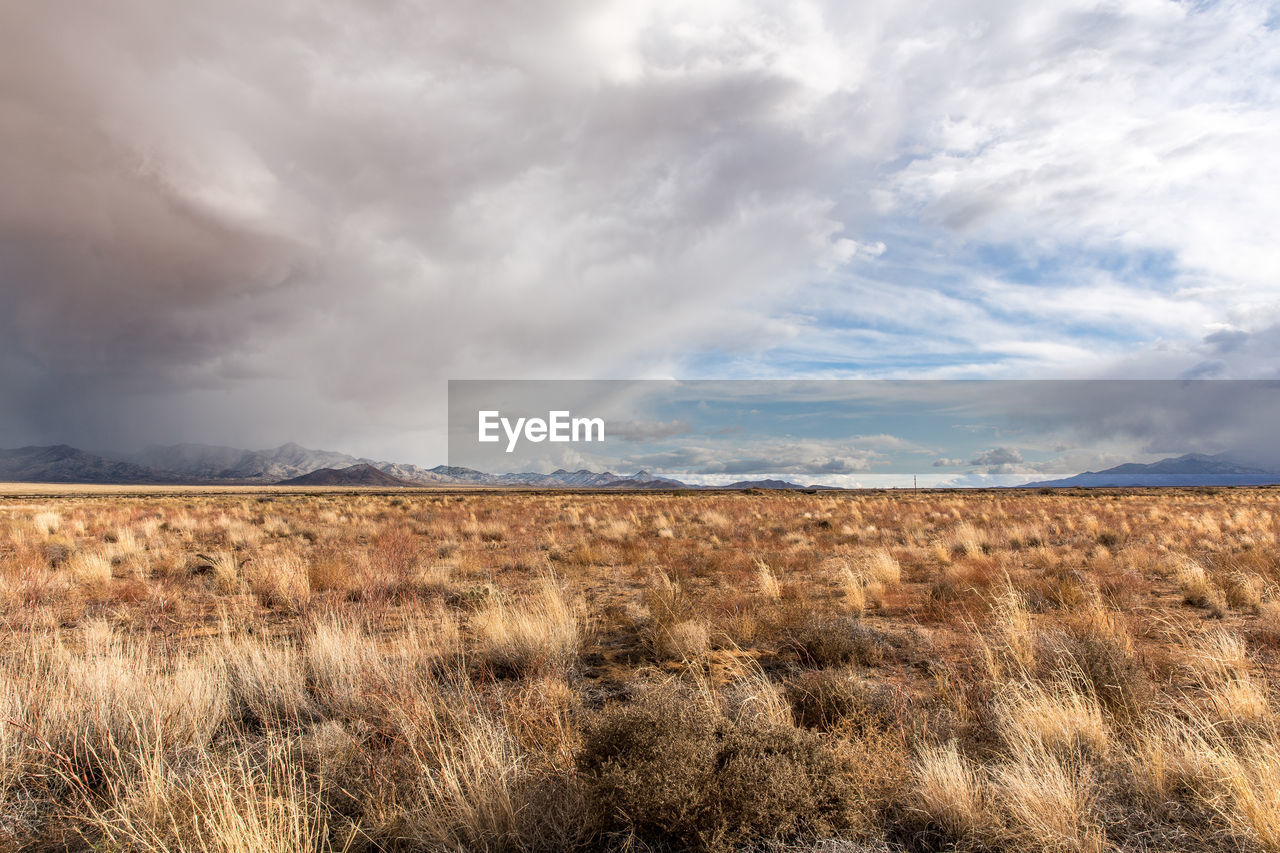 cloud - sky, sky, environment, scenics - nature, tranquil scene, beauty in nature, landscape, land, tranquility, non-urban scene, field, nature, plant, no people, grass, day, remote, horizon, horizon over land, arid climate, semi-arid