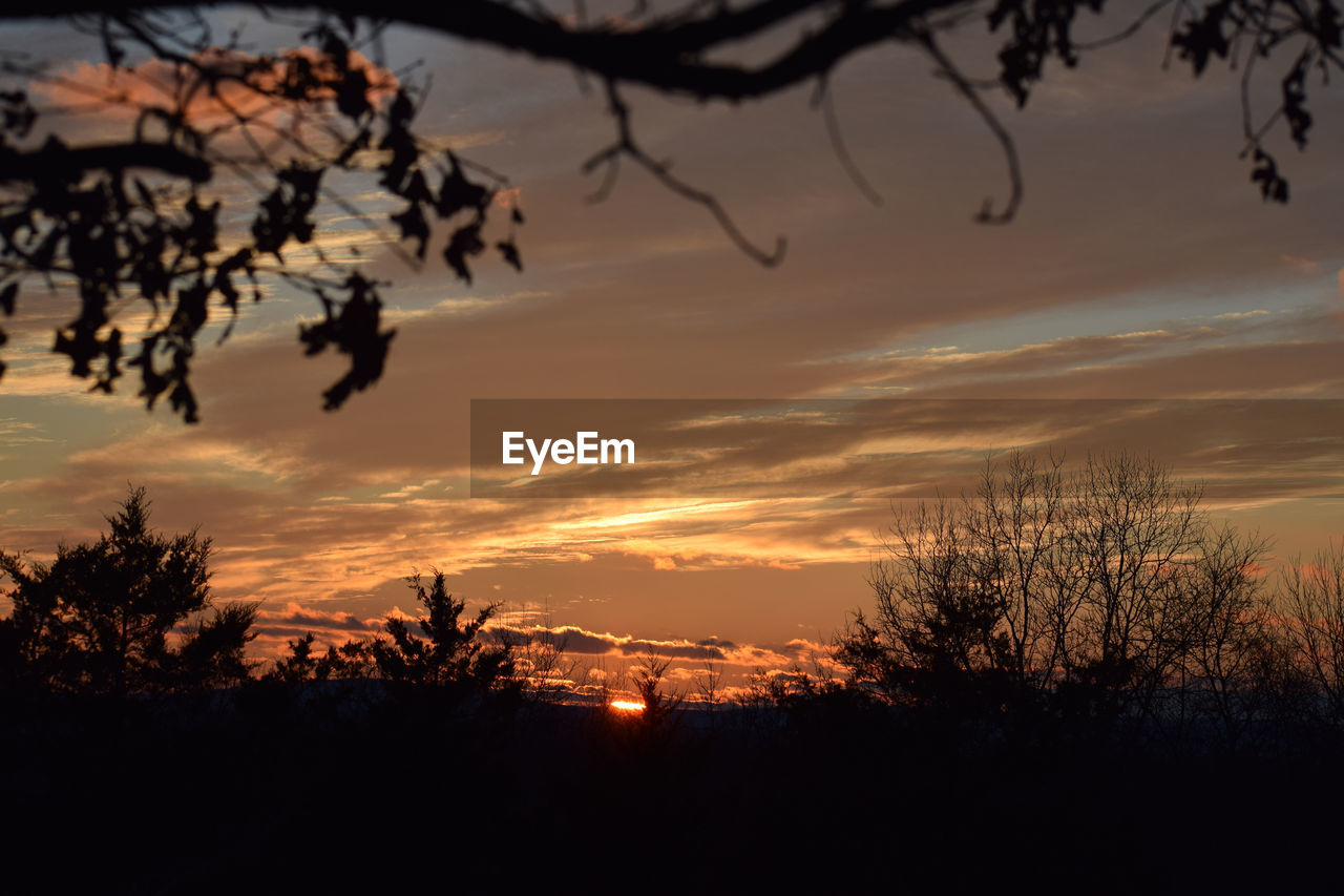 sunset, silhouette, sky, beauty in nature, tree, tranquility, cloud - sky, scenics - nature, plant, tranquil scene, orange color, branch, nature, no people, idyllic, non-urban scene, outdoors, bare tree, dusk, growth