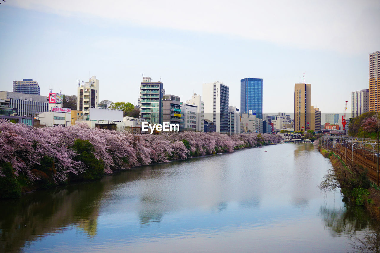 architecture, skyscraper, building exterior, built structure, city, water, waterfront, cityscape, modern, river, urban skyline, no people, outdoors, sky, tree, day, nature, beauty in nature