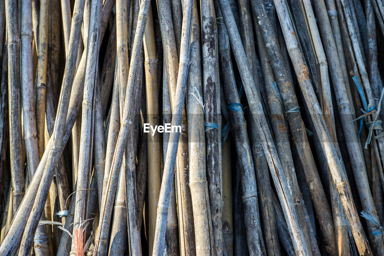 full frame, backgrounds, no people, close-up, abundance, large group of objects, pattern, day, bamboo, outdoors, textured, vertebrate, rod, still life, stack, fish, bamboo - material, detail, seafood, wood - material, fishing industry, bamboo - plant