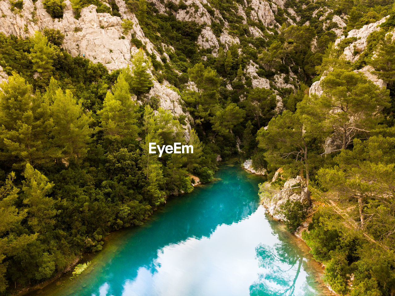 water, tree, scenics - nature, beauty in nature, plant, tranquil scene, tranquility, nature, day, no people, high angle view, green color, land, non-urban scene, forest, idyllic, river, growth, outdoors, turquoise colored, flowing