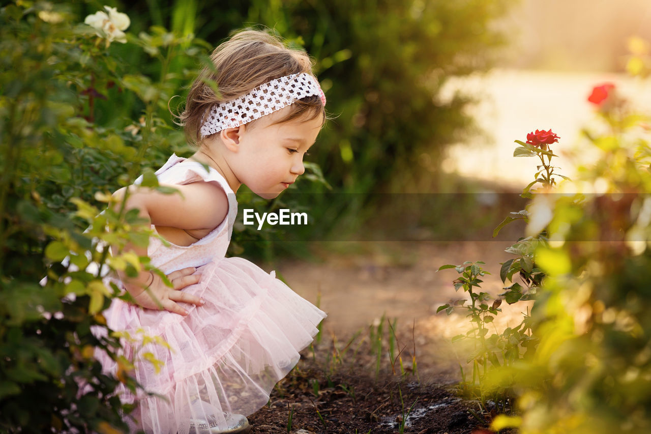 Side view of cute girl looking down while crouching against plants on field