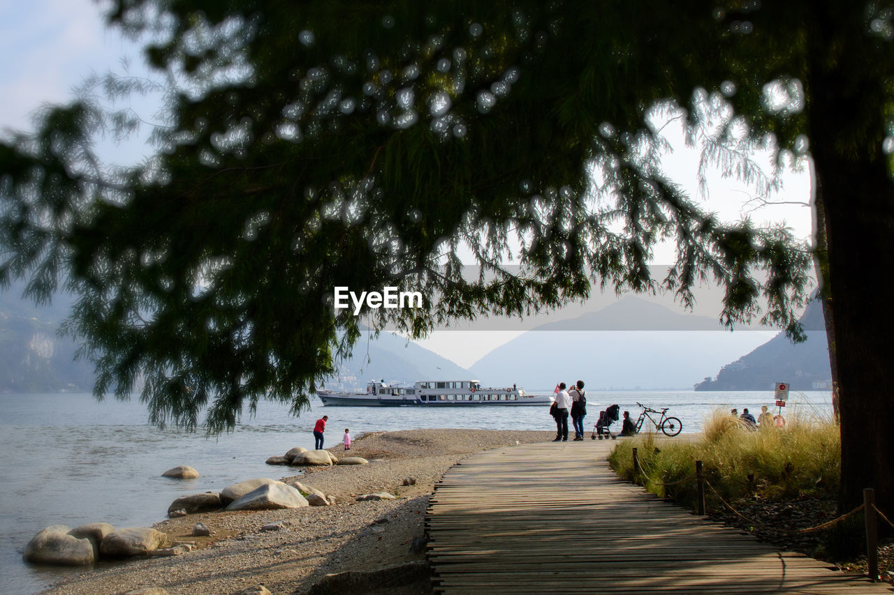 tree, group of people, water, real people, plant, sky, women, men, nature, day, sea, lifestyles, people, beauty in nature, adult, leisure activity, medium group of people, incidental people, beach, outdoors