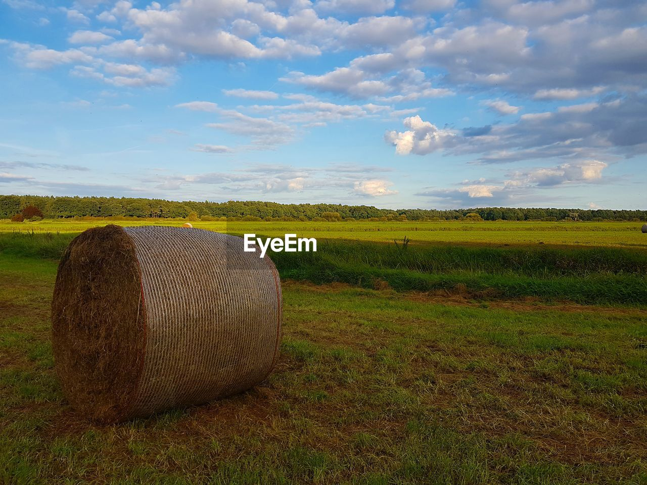 field, agriculture, rural scene, tranquility, farm, landscape, tranquil scene, hay bale, bale, sky, nature, beauty in nature, scenics, crop, hay, no people, cloud - sky, day, outdoors, grass, growth