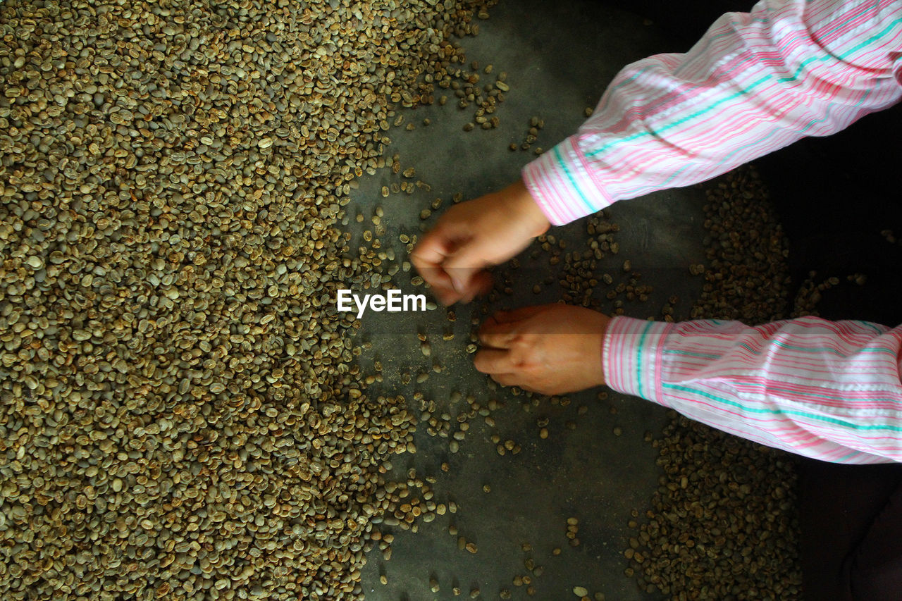 Cropped hands of child holding lentils on floor