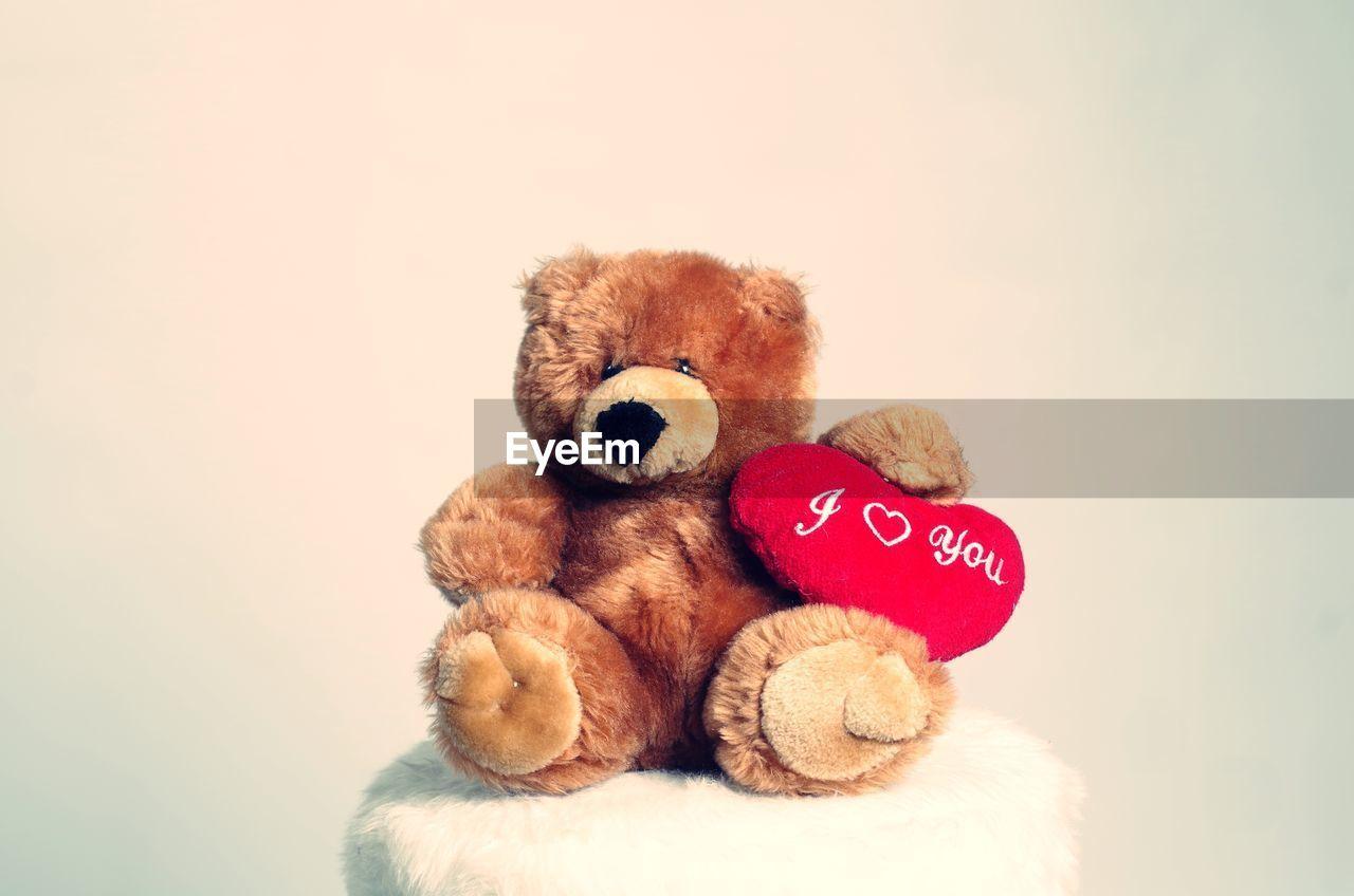teddy bear, stuffed toy, toy, animal representation, childhood, no people, studio shot, stuffed, close-up, white background, dog, indoors, panda, animal themes, mammal, day
