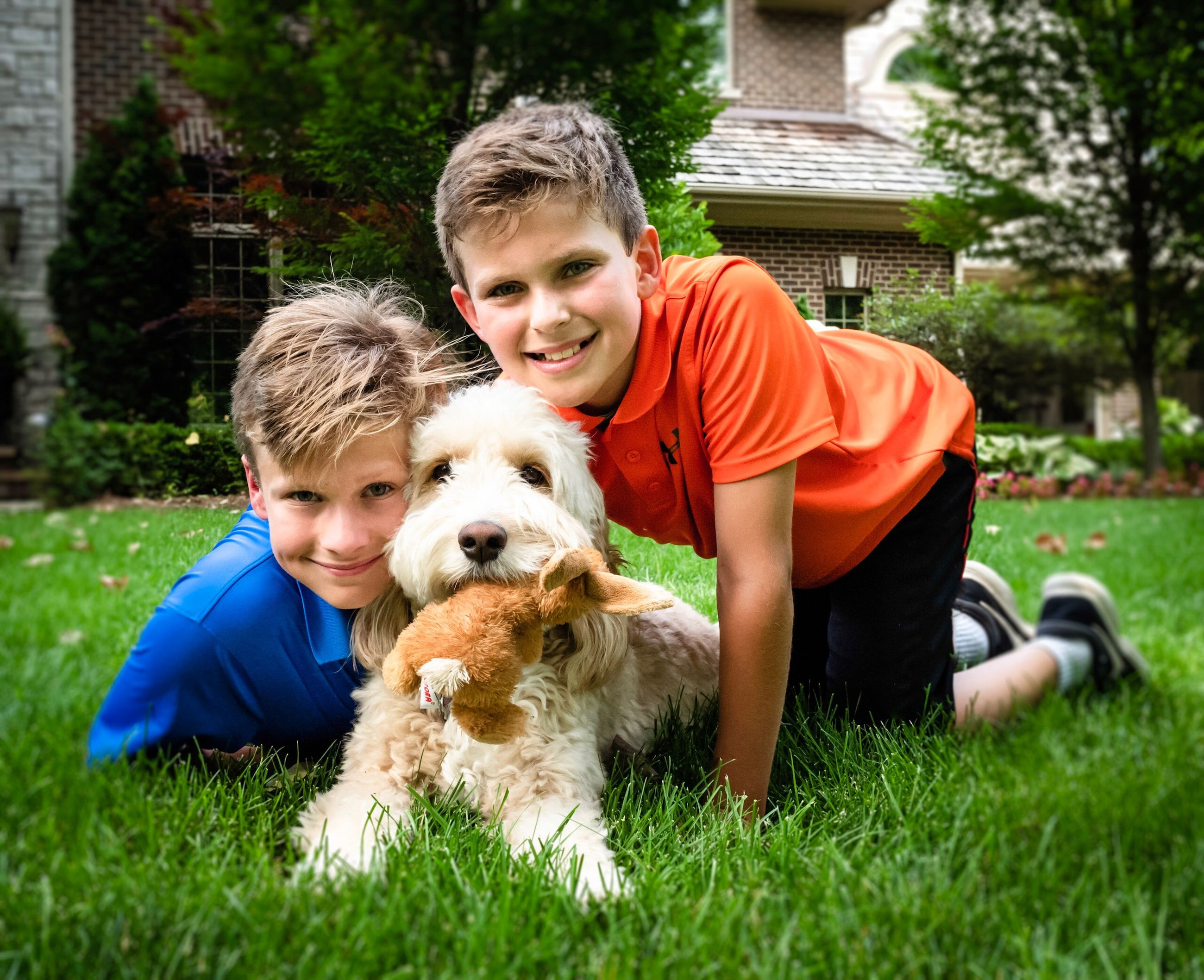 Portrait of smiling boys with dog on grass at back yard