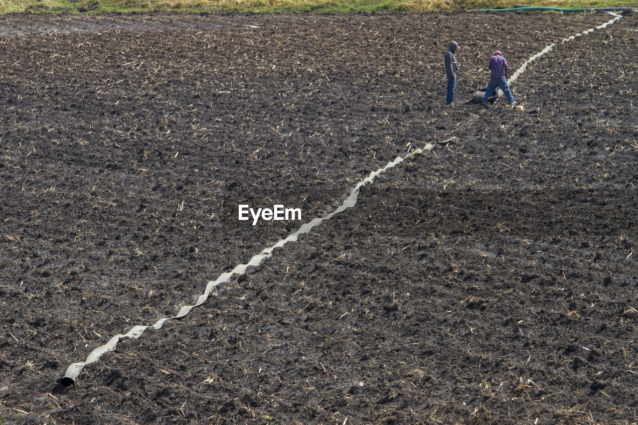 Farmers standing on agricultural field