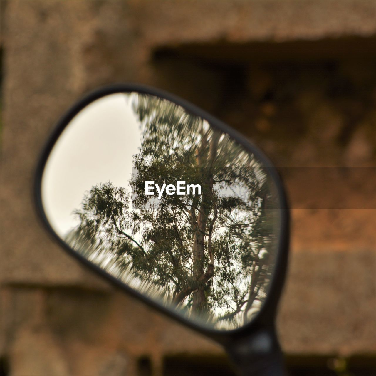 reflection, magnifying glass, close-up, tree, focus on foreground, no people, indoors, day, nature, sky