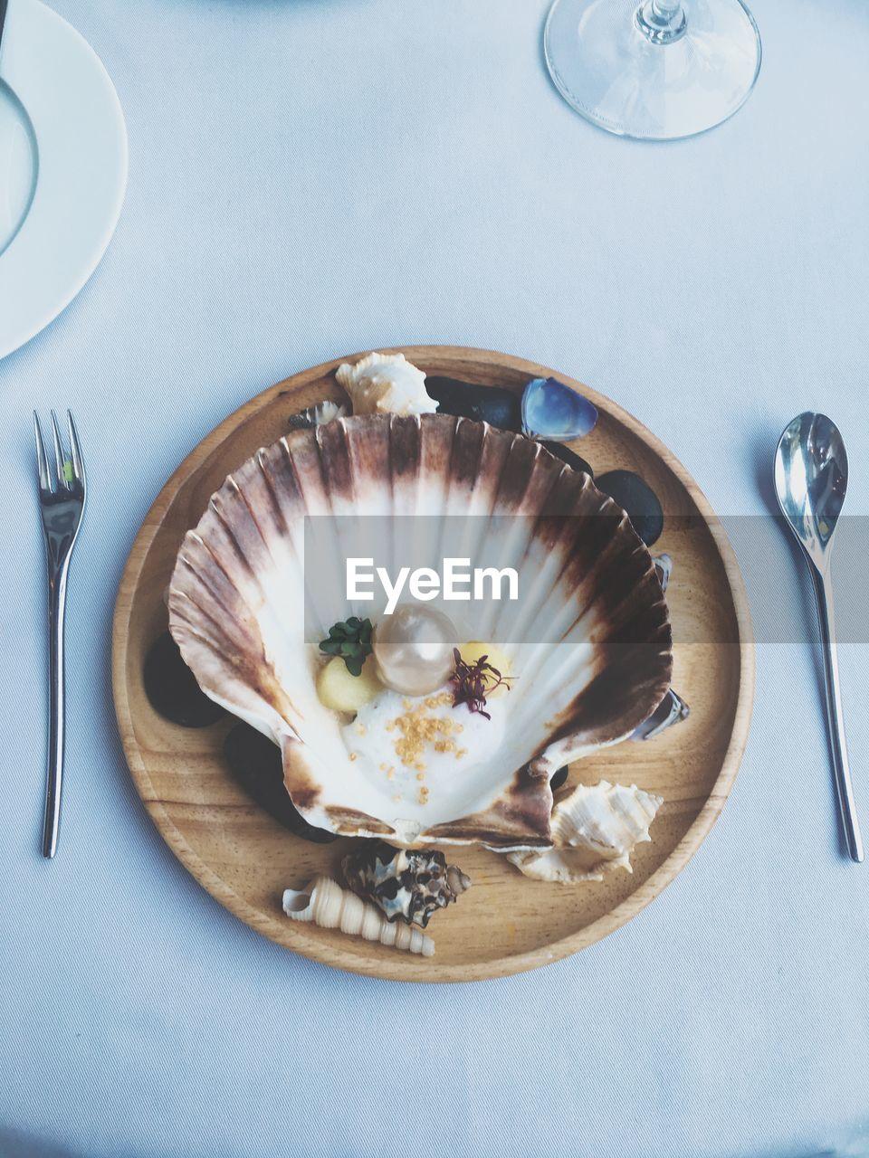 High angle view of sea shell on plate