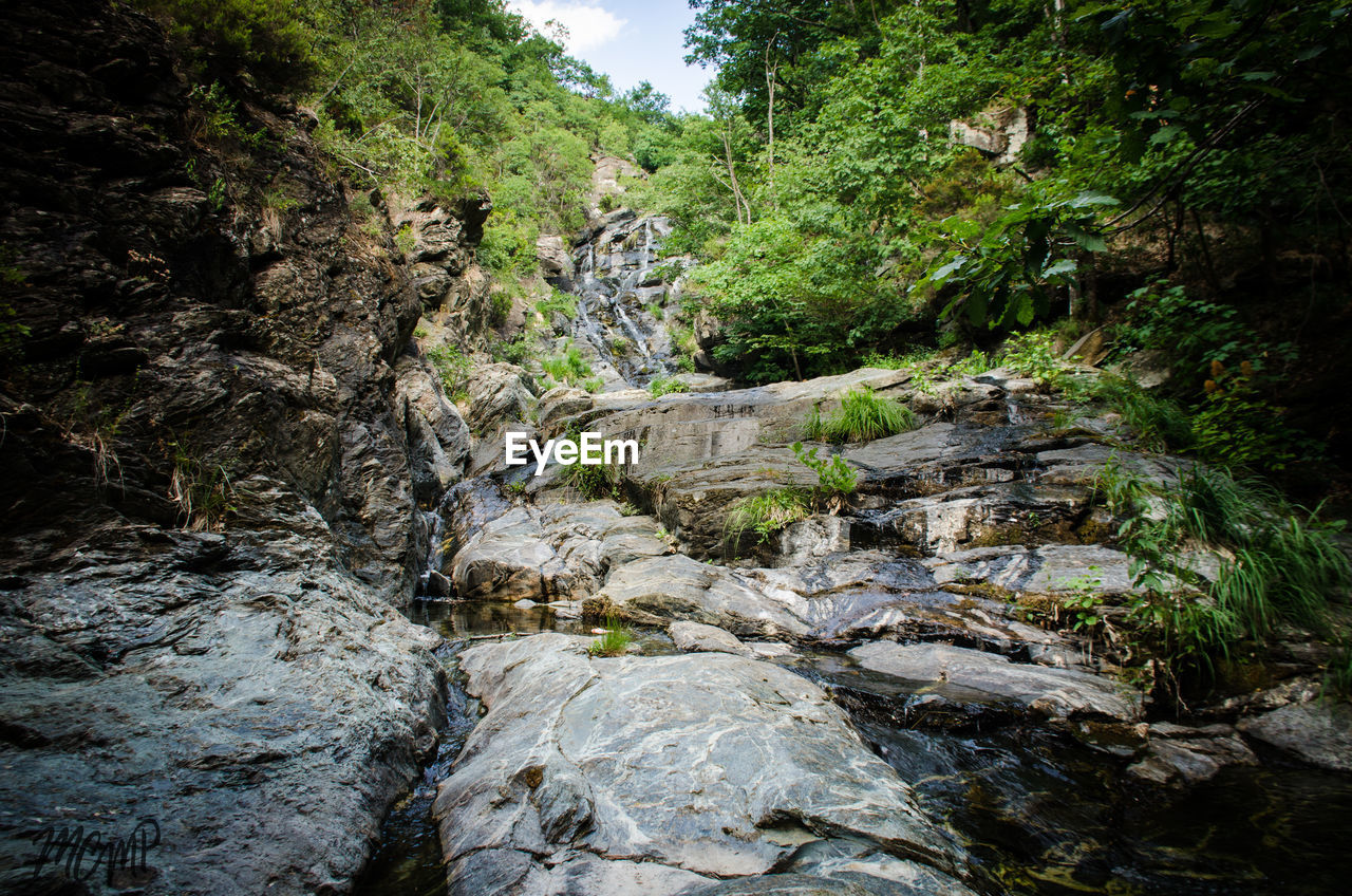 nature, tree, river, forest, beauty in nature, tranquility, tranquil scene, no people, scenics, outdoors, rock - object, waterfall, day, water, landscape, sky