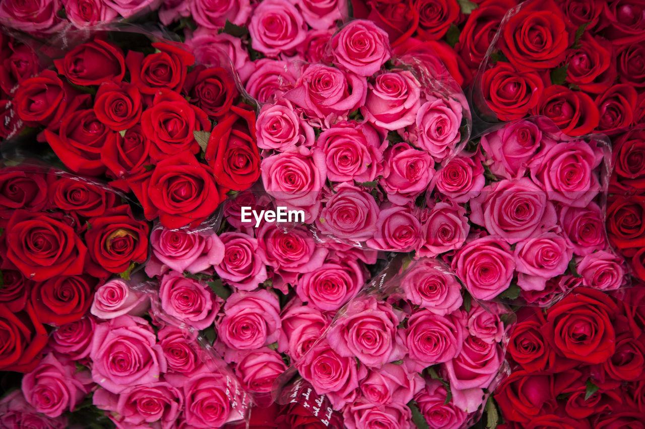 Full frame shot of rose bouquets