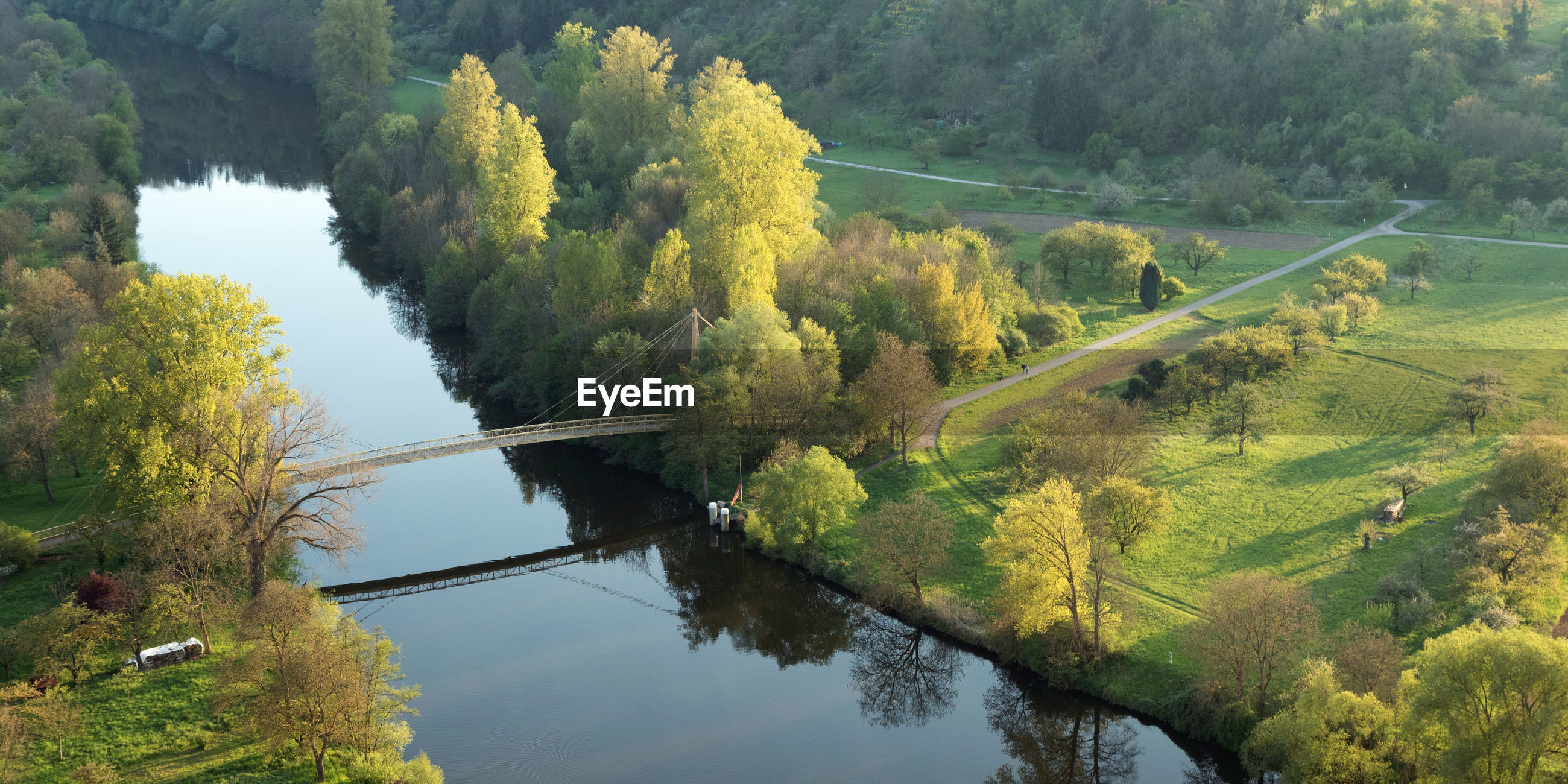 High angle view of river amidst trees