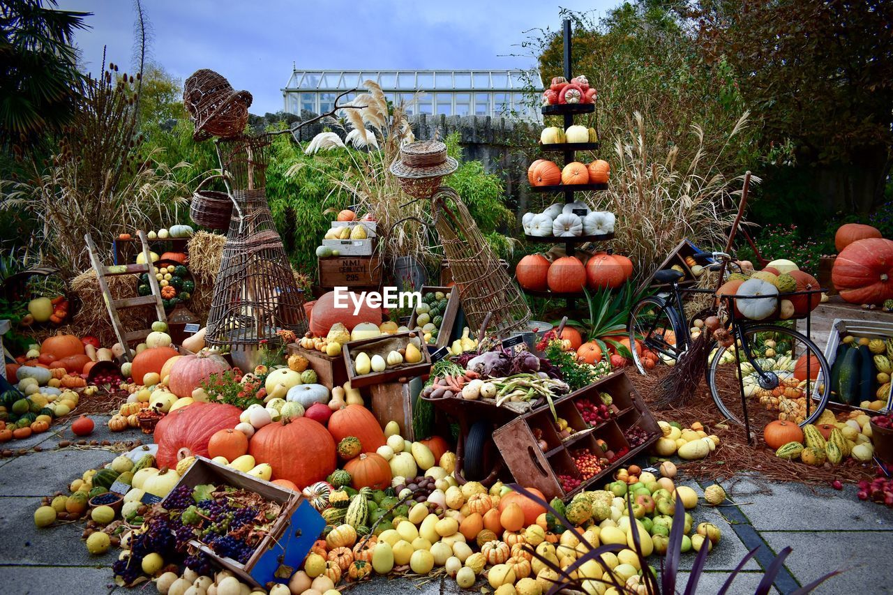 vegetable, food and drink, food, large group of objects, pumpkin, healthy eating, day, choice, abundance, nature, variation, no people, fruit, market, retail, outdoors, freshness, stack, plant, art and craft, retail display