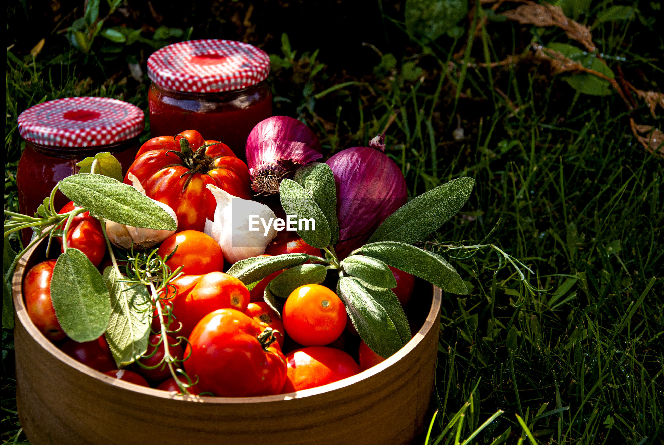 HIGH ANGLE VIEW OF FRESH TOMATOES IN CONTAINER
