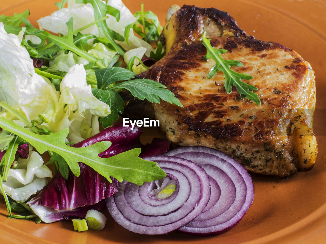 High angle view of roasted pork and salad in plate