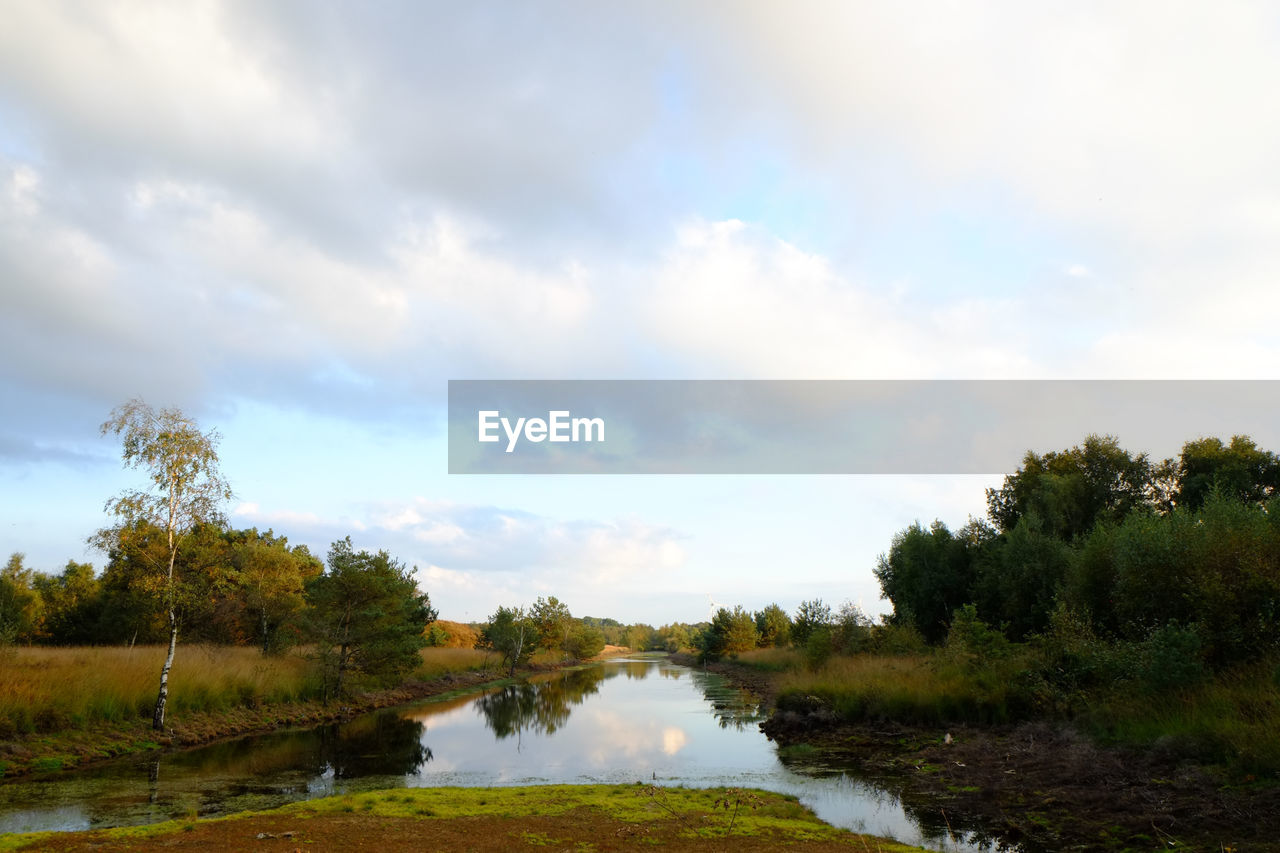 sky, tree, cloud - sky, plant, water, tranquility, tranquil scene, scenics - nature, beauty in nature, lake, nature, non-urban scene, no people, day, growth, environment, reflection, landscape, outdoors
