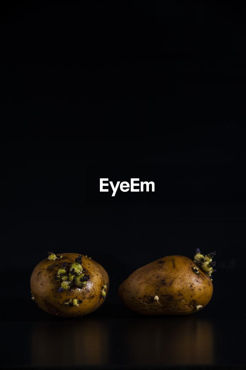 Potatoes on black background