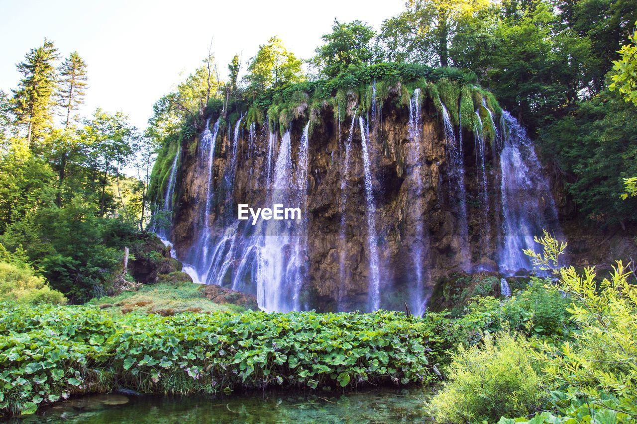 Scenic View Of Waterfall And Green Trees