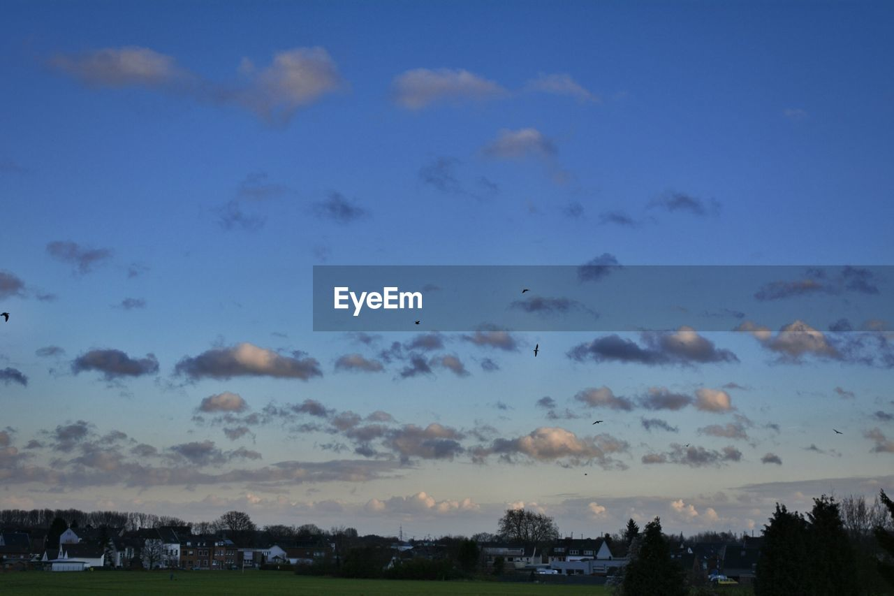 sky, cloud - sky, nature, no people, beauty in nature, outdoors, blue, tranquility, scenics, tree, day, architecture