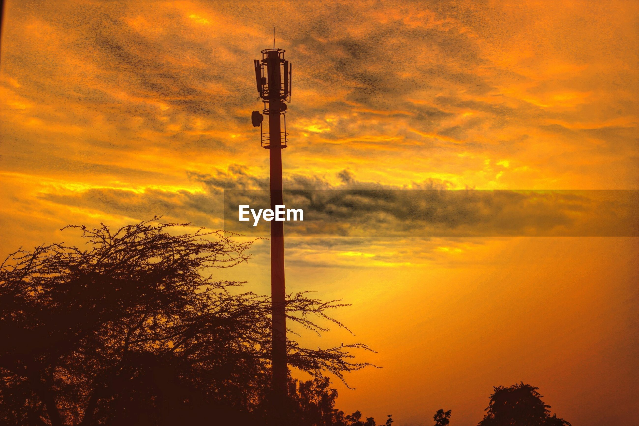 sunset, sky, silhouette, orange color, low angle view, cloud - sky, street light, beauty in nature, dramatic sky, tranquility, cloudy, scenics, tree, cloud, nature, lighting equipment, tranquil scene, idyllic, outdoors, pole