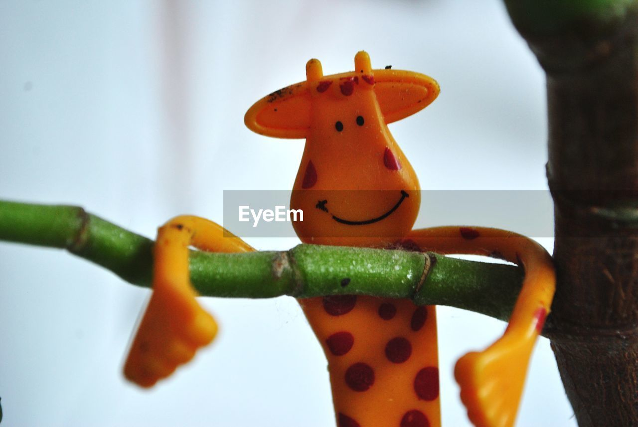 focus on foreground, close-up, no people, food, representation, vegetable, food and drink, healthy eating, orange color, creativity, indoors, wellbeing, still life, freshness, carrot, animal representation, art and craft, root vegetable, nature, toy