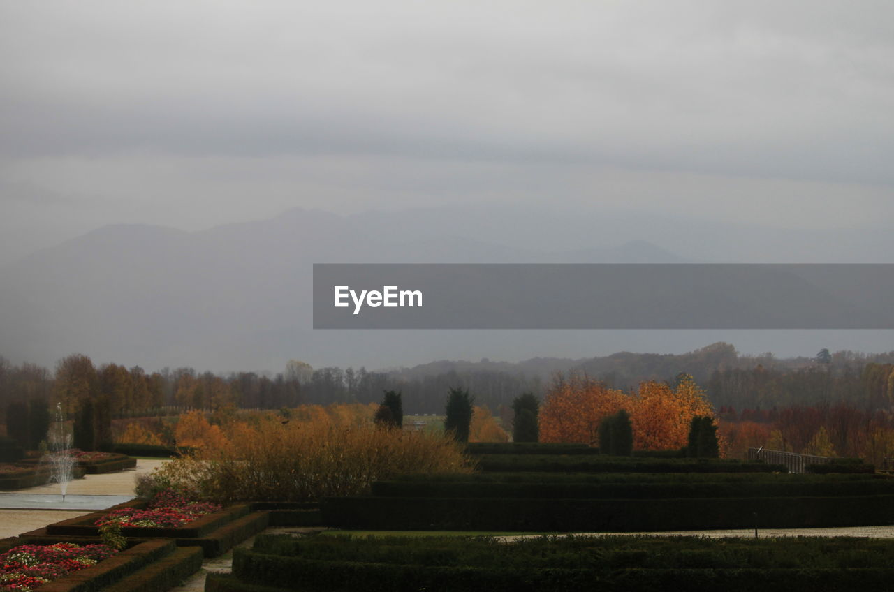 sky, tree, scenics - nature, tranquil scene, beauty in nature, plant, tranquility, nature, fog, no people, cloud - sky, landscape, environment, mountain, non-urban scene, day, outdoors, autumn, growth
