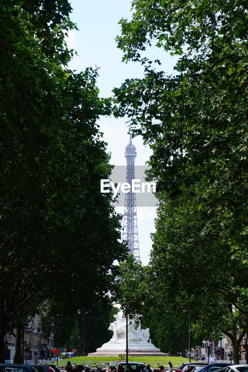 LOW ANGLE VIEW OF TREES AND TOWER
