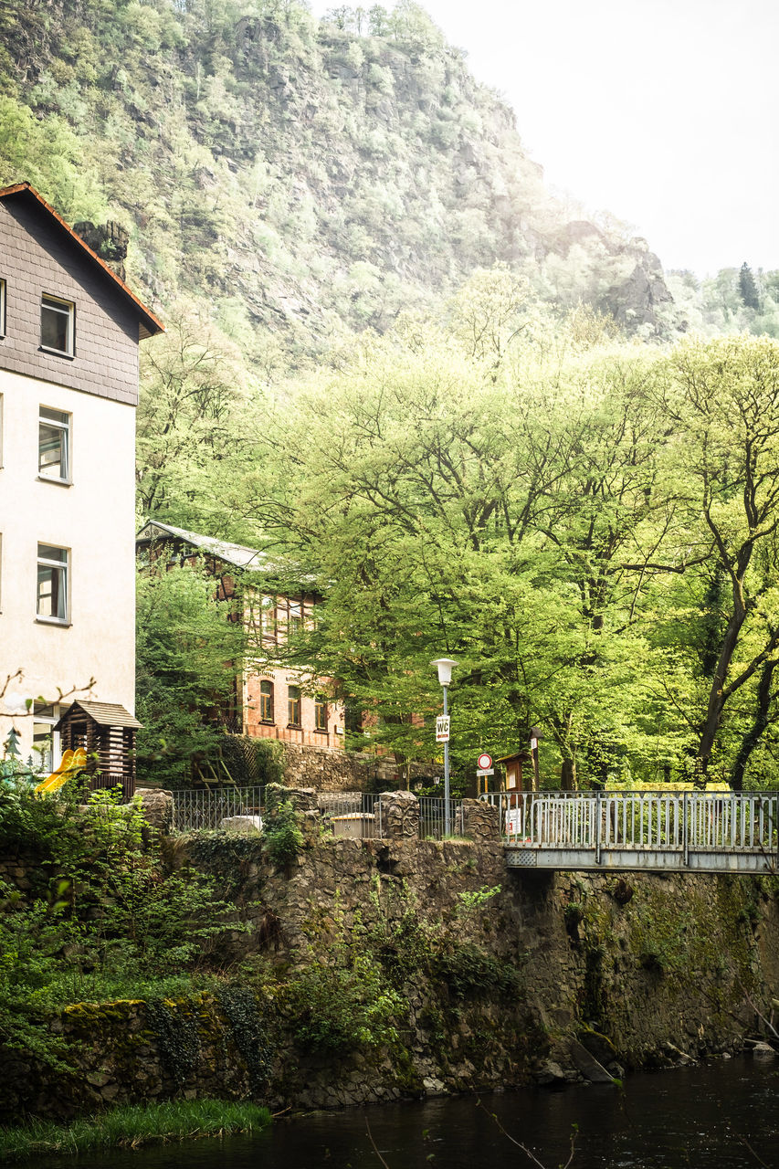 built structure, architecture, tree, plant, building exterior, building, nature, day, mountain, no people, growth, house, bridge, outdoors, connection, railing, transportation, water, bridge - man made structure, green color