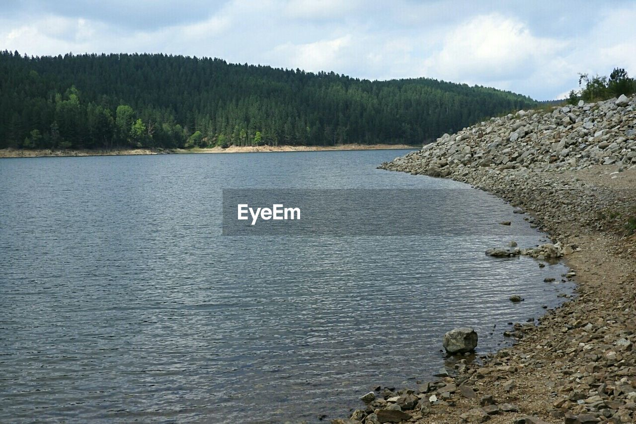 nature, water, tranquility, tree, no people, day, outdoors, sky, scenics, beauty in nature, tranquil scene, forest, landscape