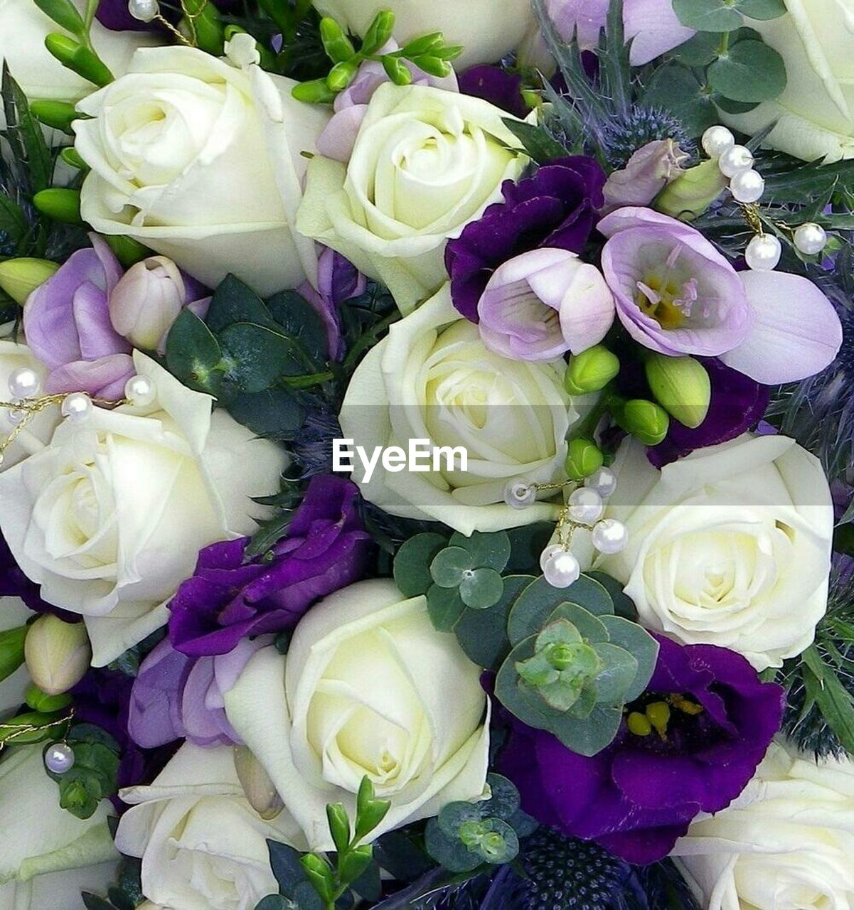 flower, freshness, rose - flower, beauty in nature, purple, petal, fragility, bouquet, flower head, no people, high angle view, close-up, indoors, nature, day