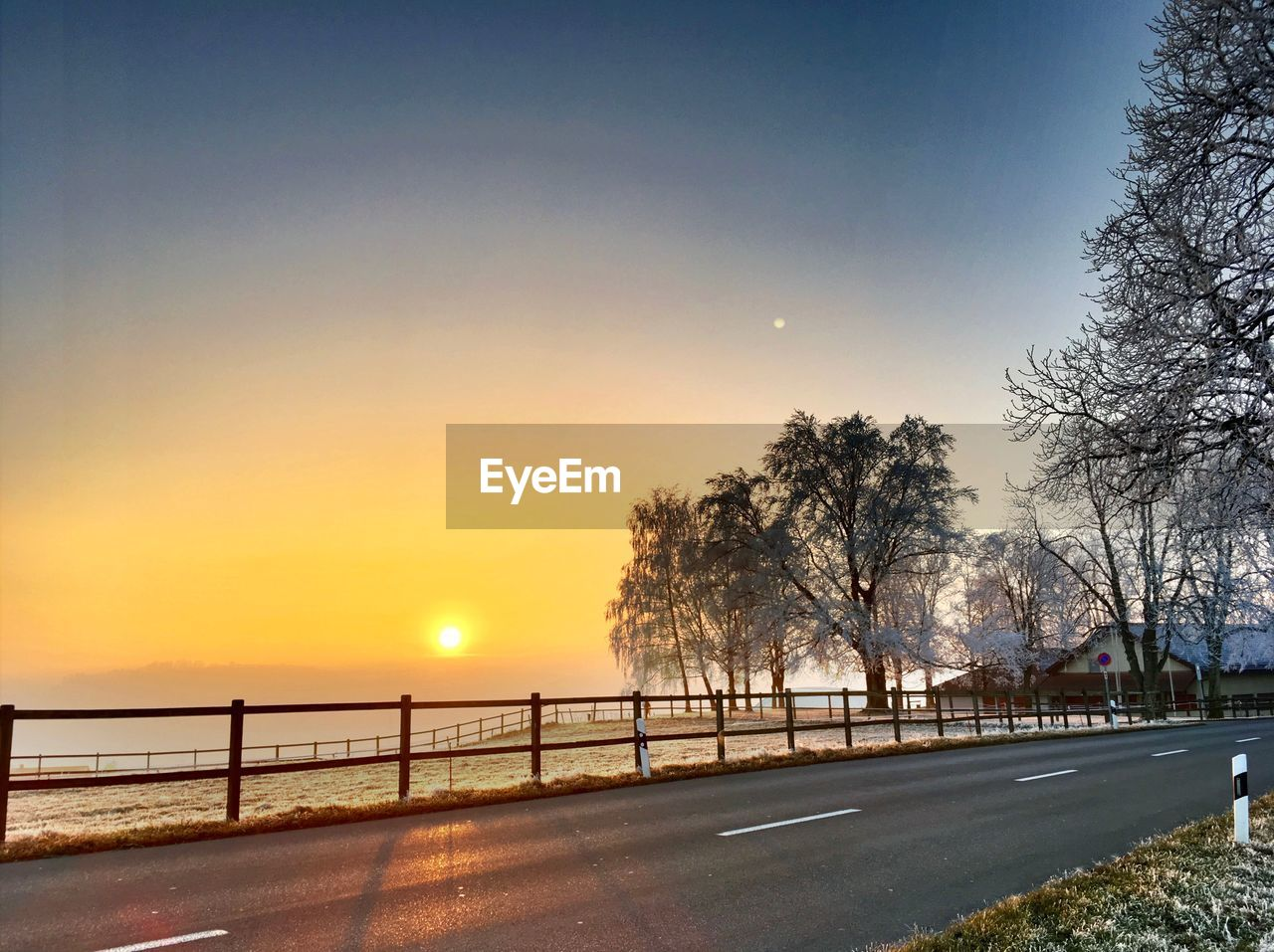 sun, sunset, tree, road, sky, orange color, nature, scenics, beauty in nature, outdoors, transportation, sunlight, clear sky, bare tree, tranquil scene, no people, tranquility, moon, day