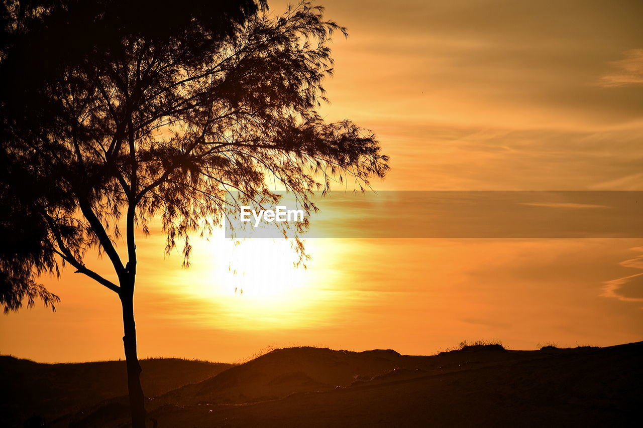 sunset, tree, scenics, silhouette, nature, beauty in nature, orange color, tranquil scene, sky, tranquility, landscape, sun, outdoors, no people, cloud - sky, mountain