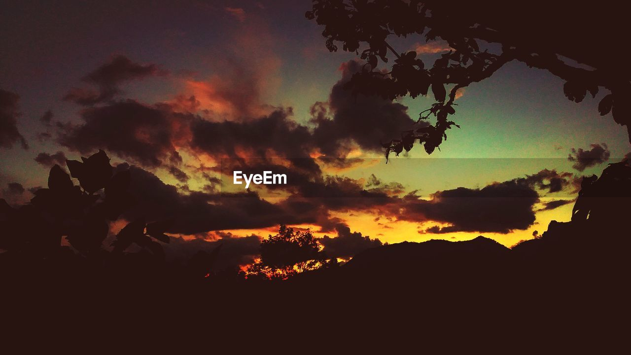 sky, cloud - sky, sunset, beauty in nature, scenics - nature, silhouette, tranquility, tranquil scene, orange color, no people, nature, dramatic sky, low angle view, idyllic, tree, outdoors, back lit, environment, plant, non-urban scene