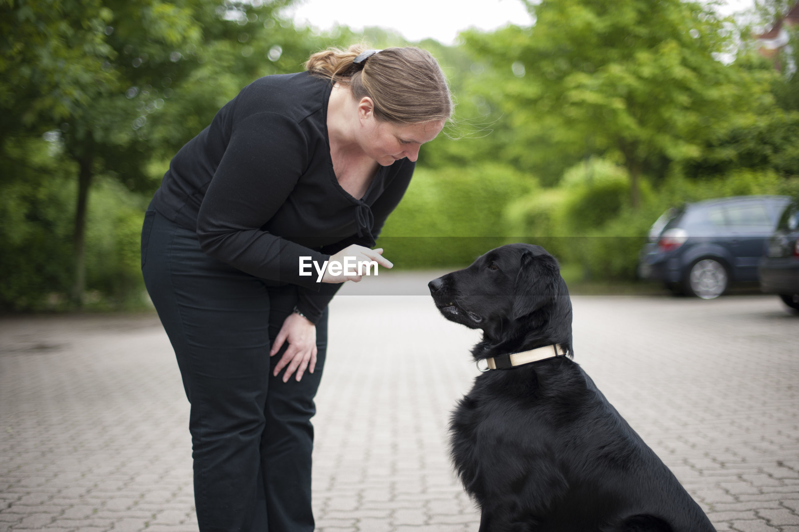 Mature woman gesturing at dog against trees